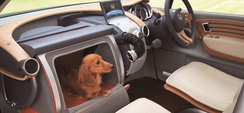 Ilyen kutyabarát kocsi nincs még egy