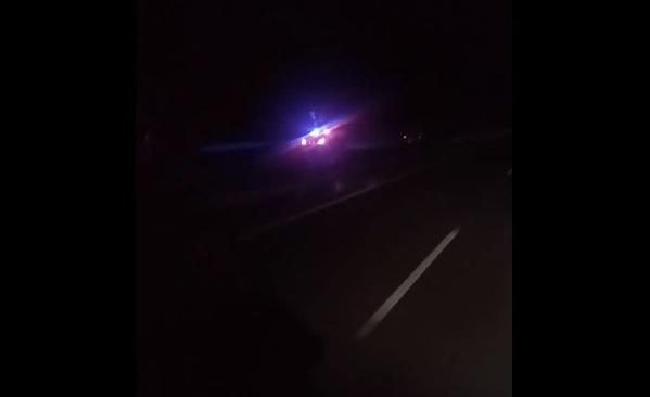 Videó – Forgalommal szembe haladó autóst üldöztek a rendőrök éjjel az M6-os autópályán