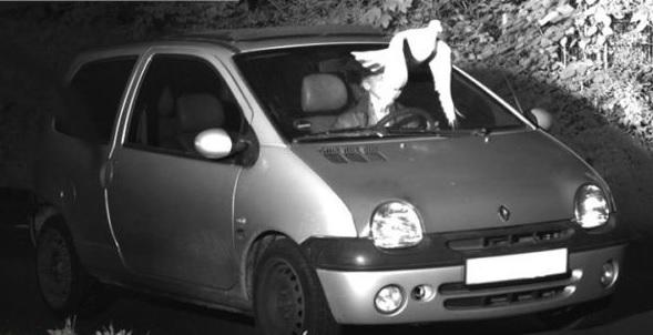 """Fotó – A """"szentlélek"""" mentette meg a büntetéstől az autóst"""