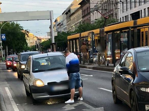 Fotók: Már megint egy autós, aki az út kellős közepén könnyített magán