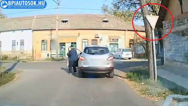 VIDEÓ: Ő a hónap tahója! A kereszteződés közepén egyszerűen elballagott