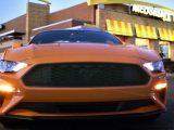 Összefogott A Ford és a McDonald's – Kávészemek héjából gyártana autóalkatrészeket