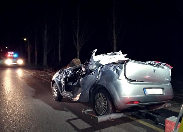 Tegnap emberéletet követelt a vihar – Menet közben zuhant rá a hatalmas fa az autósra