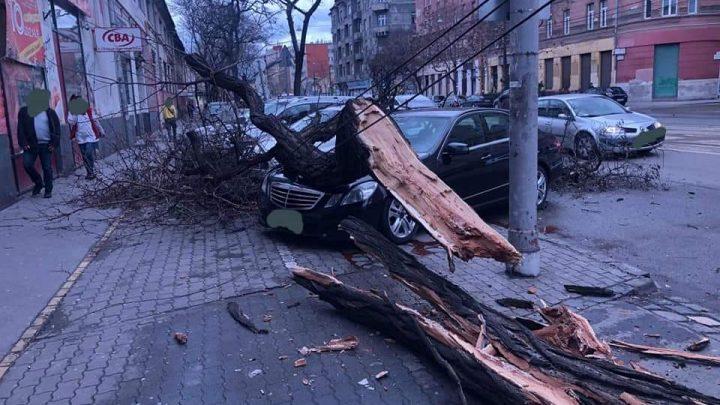 Az érkező CIARA vihar veszélyeire figyelmeztet a Katasztrófavédelem és az OMSZ