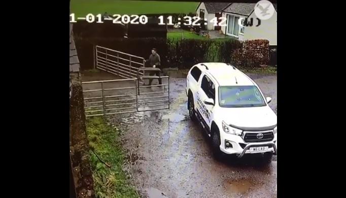 VIDEÓ: Igencsak meggyűlt a baja a kertkapuval egy autósnak – Az eredmény egy elég vicces felvétel