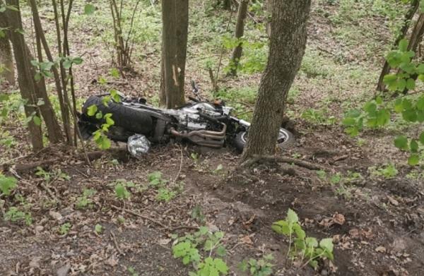 FOTÓK: Szakadékba zuhant és meghalt egy motoros Felsőtárkánynál – Nem volt jogosítványa a motorra