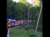 Egy 7 éves gyerek öccsével együtt elcsente nagyszüleik autóját – Meghaltak miután fának csapódtak