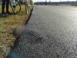 Leaszfaltozták egy macska tetemét egy hazai útépítésen