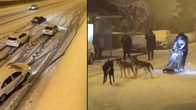 VIDEÓ: Volt aki kutyaszánra pattant, más mozdulni sem tudott autójával a jeges úton – 40 éve nem volt ekkora hó Spanyolországban