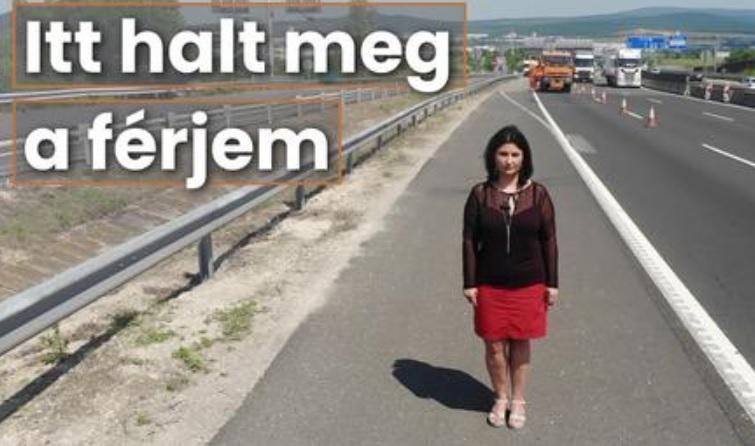 VIDEÓ: Szívszorító videót tett közzé a Magyar Közút – Kérjük figyeljetek rájuk